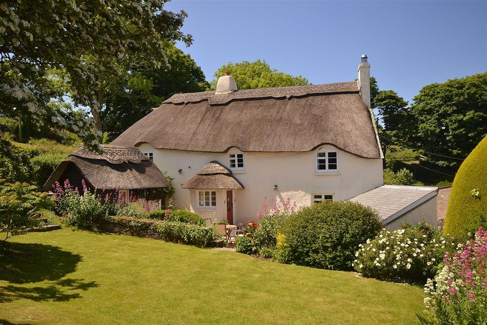 old thatch torcross toad hall cottages