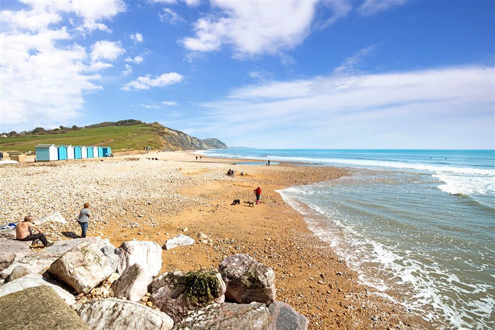 Dog Friendly Cottages In Charmouth