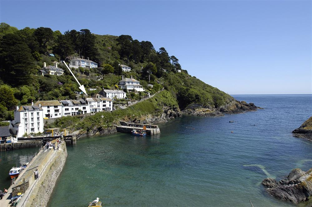 Dog Friendly Cottages Polperro